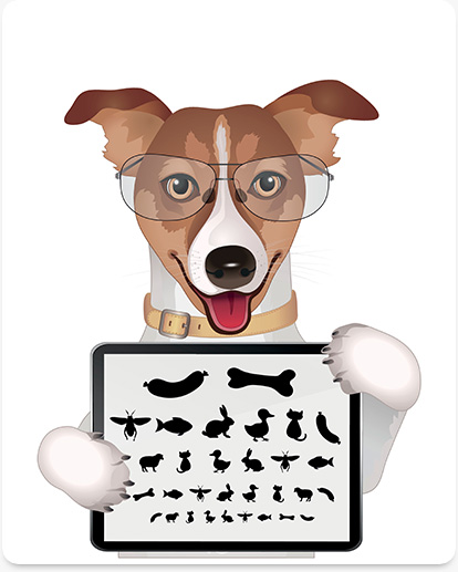 vero beach pet eye surgery